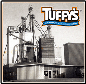The Tuffys Plant